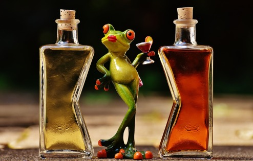 frogs-1650657_1280