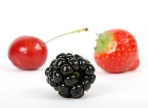 berry-1239429_640