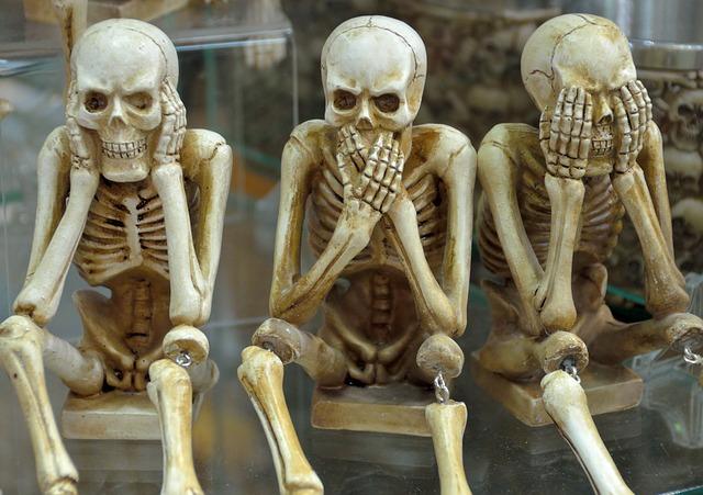 skeletons-1617539_640