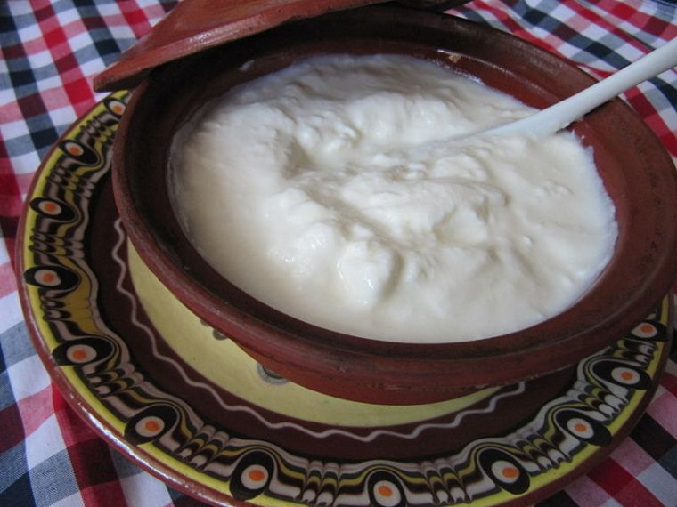 800px-bulgarian_yogurt