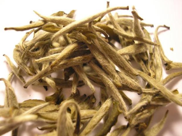 Bai_Hao_Yin_Zhen_tea_leaf_(Fuding)